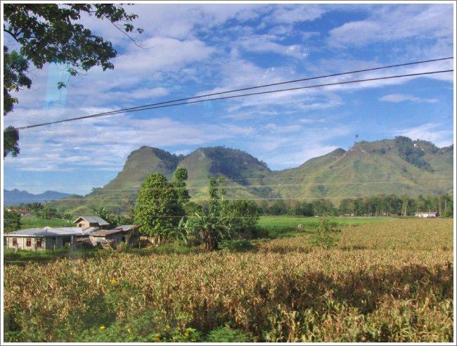 Crops and farmland surrounding